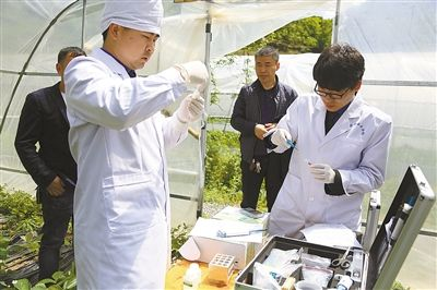 绿色食品生产与检测专业