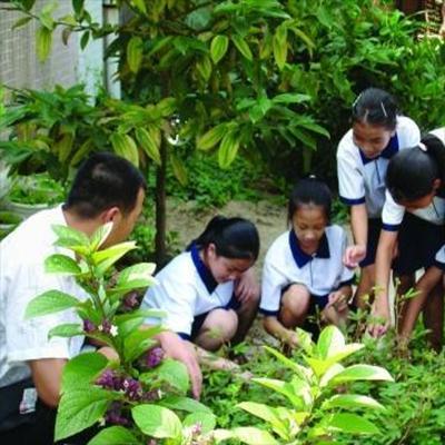 贵州中医药职业学校(中草药种植专业)招生条件