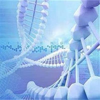 医学检验技术专业就业方向